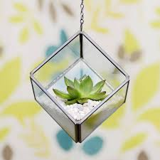 mini geometric glass cube succulent terrarium kit by dingading