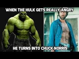 Chuck Norris Meme - 100 most hilarious chuck norris memes ever youtube