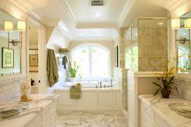 bathroom ideas houzz endearing master bathroom ideas houzz with bathroom master