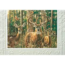 pumpernickel press cards pumpernickel press woodland shadows birthday card