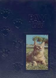 cat high the yearbook 1978 boca raton high school yearbook online boca raton fl