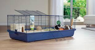 gabbie per gabbie per conigli roditori maxi zoo