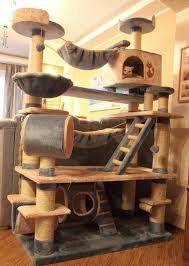 126 best cat stuff images on cats cat furniture and