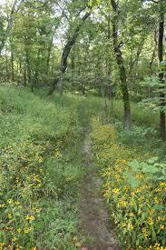 Rock Tunnel Leaf Green Map Park Trails Missouri State Parks