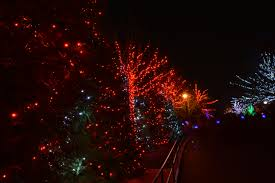 Zoo Light Dc by File Zoolights Dc 2014 16075767202 Jpg Wikimedia Commons