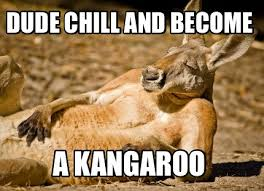 Kangaroo Meme - meme creator dude chill and become a kangaroo meme generator at