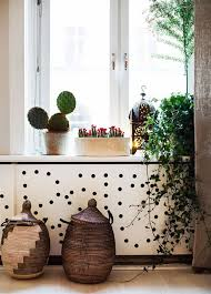 123 best house plants images on pinterest succulents balconies