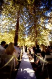 Casual Backyard Wedding Ideas Average Wedding Budget Barbecue Catering Small Checklist Nice