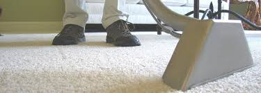 Rug Cleaners Charlotte Nc About Carpet Cleaners And Cleaning Services In Charlotte Nc