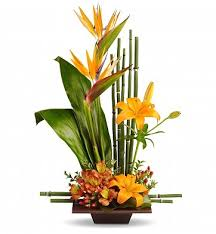 flowers arrangement grace arrangement tropical flowers and