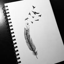 pretty feather drawings google search drawings pinterest