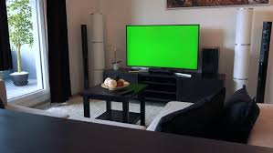man watching tv green screen with cat in the room young man with