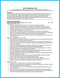 Senior It Auditor Resume Best Best Auditor Resume Templates Samples Images On Pinterest