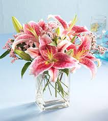 stargazer bouquet flowers and gifts stargazer bouquet