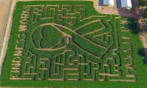 atlanta area of pumpkin patches corn mazes hayrides and