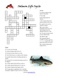 salmon life cycle crossword puzzle 6th 8th grade worksheet