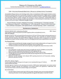 Cto Resume Example by Erp Consultant Resume