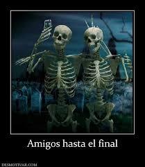 Skeleton Computer Meme - beautiful 23 skeleton computer meme wallpaper site wallpaper site
