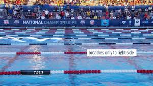 katie ledecky u0027s 800 meters in london the birth of dominance the