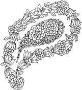 paisley coloring free printable coloring pages