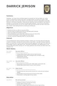 Resume For Security Jobs by 10 Professional Security Officer Resume Sample Writing Sample