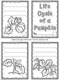 pumpkin life cycle activity accordion fold mini book by lisa