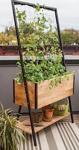 143 best images about balcony gardening on pinterest gardens