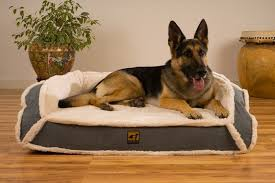 review indestructible dog bed for destroyer types