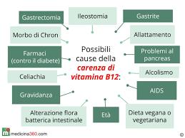 alimentazione ferro basso di vitamina b12 sintomi cause e conseguenze fare terapia