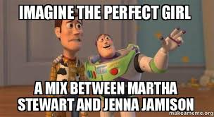 Perfect Girl Meme - imagine the perfect girl a mix between martha stewart and jenna