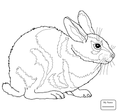 coloring pages jessica name rabbit coloring pages cartoon rabbits mammals for kids