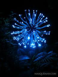 Botanical Garden Atlanta Lights Bruce Munro U0027s Light In The Garden Show In Atlanta U0027s Botanical