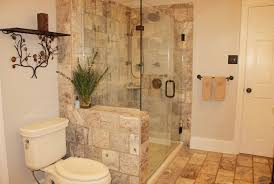 traditional 3 4 bathroom with high ceiling frameless showerdoor
