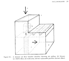 cp tissue culture in the kitchen