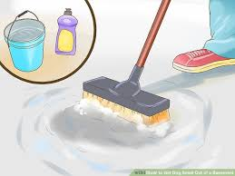 Damp Basement Smell by 6 Ways To Get Dog Smell Out Of A Basement Wikihow
