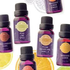 blessed scents com buy scensty products become a scentsy