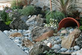 Drought Friendly Landscaping by 5 Drought Tolerant Landscaping Ideas For A Modern Low Water Garden