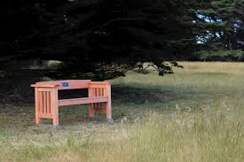 honoring loved ones with a memorial bench support mcbg inc