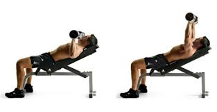 Neutral Grip Incline Dumbbell Bench Press Chest Workout 5 Exercises To Build The Upper Chest Myprotein