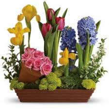 flower shops in chicago tulips flower delivery in chicago donna s garden flower shop