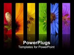 wooden letter templates powerpoint template educational wooden blocks with colorful powerplugs powerpoint template with rainbow of flowers collage including red orange yellow green blue and