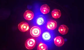 types of grow lights different types of grow lights greenbudguru