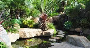 Backyard Fish Pond Ideas Garden Fish Ponds Designs Home Furniture Design