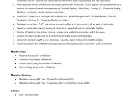 real resume samples real estate resume objectiveauto appraiser