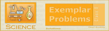 ncert exemplar problems solutions for class 10 science