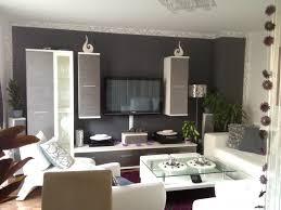 wandfarbe für wohnzimmer wandfarbe wohnzimmer ziakia