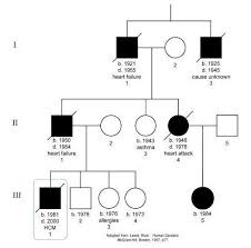 Pedigree Chart For Color Blindness Hemophilia Pedigree Chart 6 Genotype Of Hemophilia Biological