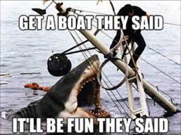 Funny Shark Memes - the funniest jaws memes on the net great white sharks jaws movie
