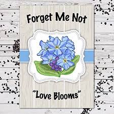 forget me not seed packets forget me not seed favors blooms 25 individual packets