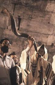 shofar from israel 197 best shofars the calls of holy sounds images on